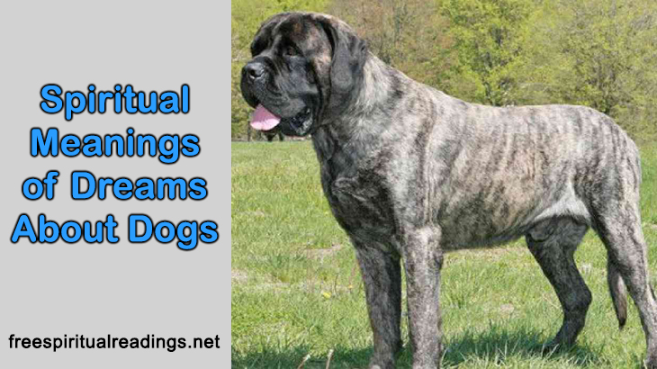 Spiritual Meanings of Dreams About Dogs